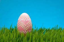 Pastel Easter Egg In Lush Grass Stock Images