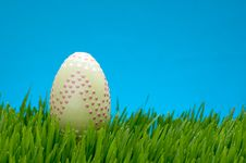 Pastel Easter Egg In Lush Grass Royalty Free Stock Photography