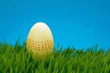 Pastel Easter Egg In Lush Grass Royalty Free Stock Photos