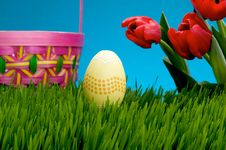 Pastel Easter Egg In Lush Grass Royalty Free Stock Images