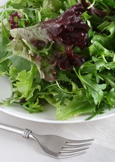 Free Fresh Leaf Salad With Fork On Tea-cloth Royalty Free Stock Photography - 4441057