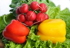 Free Vegetables With Salad, Radish And Peppe Stock Image - 4441191