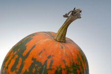 Free Pumpkin Stock Photos - 4441953