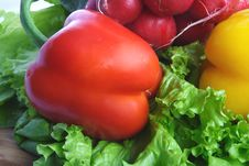Free Vegetables With Salad, Radish And Peppe Royalty Free Stock Photography - 4442047