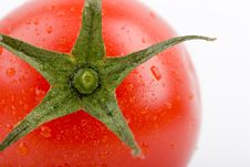 Free Tomato Royalty Free Stock Photography - 4444517