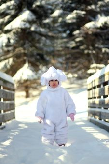 Free Winter Bunny2 Stock Images - 4444724