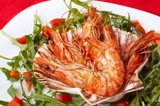 Shrimps And Rocket Salad Royalty Free Stock Photography