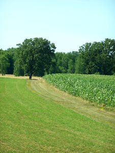 Free Farm Stock Images - 4445784