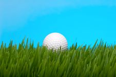 Free Golf Ball In Tall Grass Stock Photo - 4446020