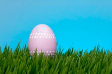 Free Easter Egg Stock Images - 4446024