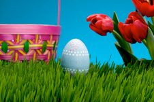 Free Easter Egg Stock Images - 4446054