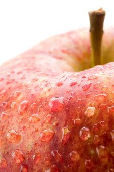 Free A Fresh Red Apple Royalty Free Stock Photography - 4446087