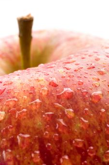 Free A Fresh Red Apple Royalty Free Stock Photos - 4446088
