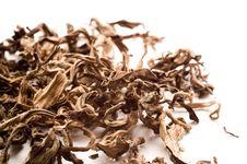 Free Dried Leaves Of Black Tea Stock Image - 4446091