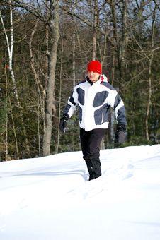 Free Winter Walk Stock Image - 4447241