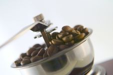 Free Coffee In Grinder Royalty Free Stock Photo - 4447865