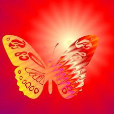 Butterfly And Sun Royalty Free Stock Photography