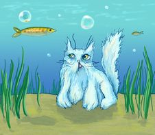 Free The Cat In The Sea Watches A Fish. Royalty Free Stock Images - 4449319