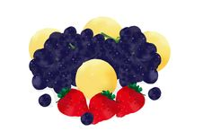 Free Berries And Fruits Stock Photo - 4449550