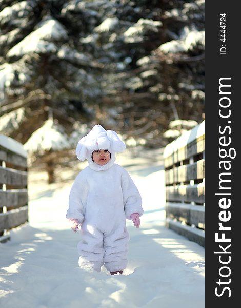 Winter bunny2