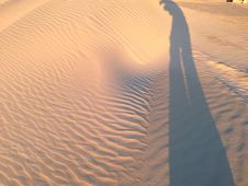 Free Sand Dunes In Lancelin Perth Australia Royalty Free Stock Photography - 44435827