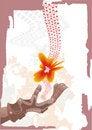 Free Fiery Flower Stock Image - 4451811