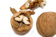 Free Walnut On White Isolated Background Stock Photo - 4451340