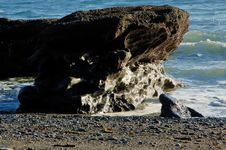 Free Rocks In The Waves Royalty Free Stock Photos - 4453498