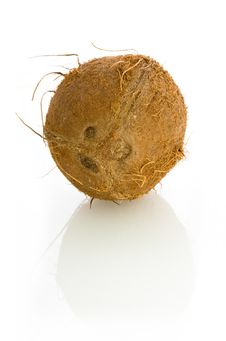 Free Coconut Royalty Free Stock Photo - 4454305