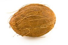 Free Coconut Royalty Free Stock Photography - 4454367