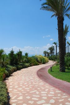 Free Path In Hotel Park Royalty Free Stock Images - 4455679