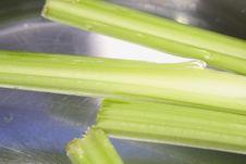 Free Floating Celery Stock Photography - 4459472