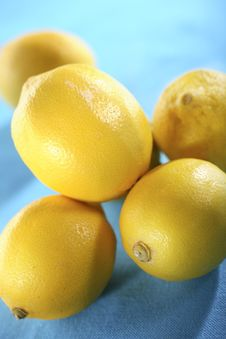 Free Lemons Royalty Free Stock Photos - 4459558