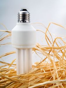 Low Energy Bulb Stock Images
