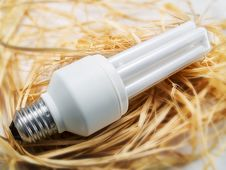 Low Energy Bulb Royalty Free Stock Photo