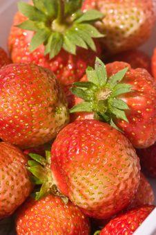 Free Strawberry Stock Photo - 4461520