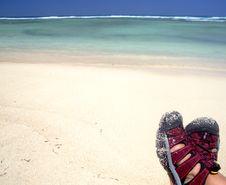 Enjoying Tropical Beach Stock Photos