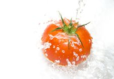 Free Tomato And Water Royalty Free Stock Image - 4461686