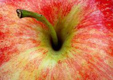Free Apple Royalty Free Stock Photo - 4462065
