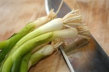Free Cutting Green Onions 2 Royalty Free Stock Photos - 4462268
