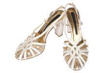 Free Fashionable Female Shoes Royalty Free Stock Photography - 4462537