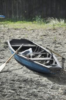 Free Small Row Boat Stock Images - 4462914