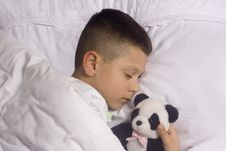 Free Boy Asleep With  Bear Stock Image - 4463461
