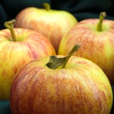 Free Four Apples Royalty Free Stock Image - 4464746