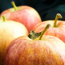 Free Four Apples Stock Photography - 4464762