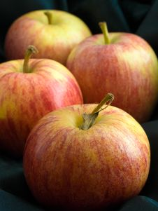 Free Four Apples Royalty Free Stock Images - 4464779