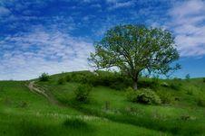 Free Hillside Stock Photo - 4466490