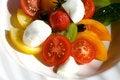 Free Tomato Salad Stock Images - 4479584