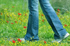 Free Walking On The Field Royalty Free Stock Images - 4472879