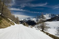 Free LaThuile, Snow, Trees And Slopes Stock Photo - 4474440